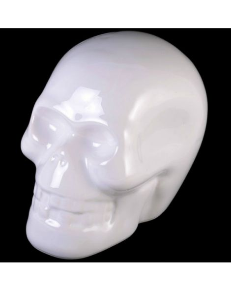 White Skull Money Box